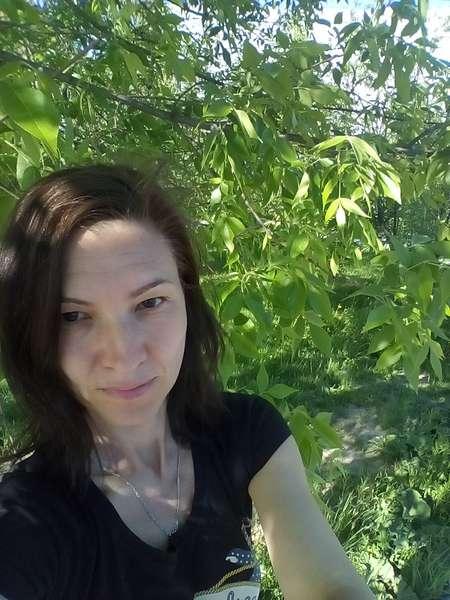 Работа в красногорске удаленно фриланс сайт на wordpress