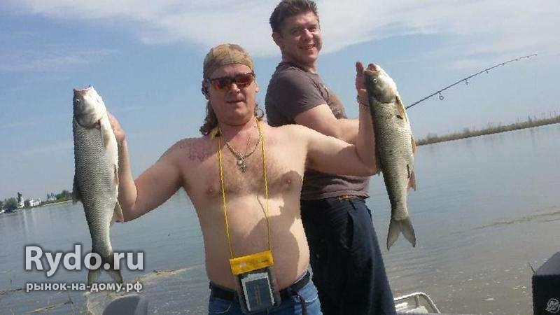 рыбаков гостевая