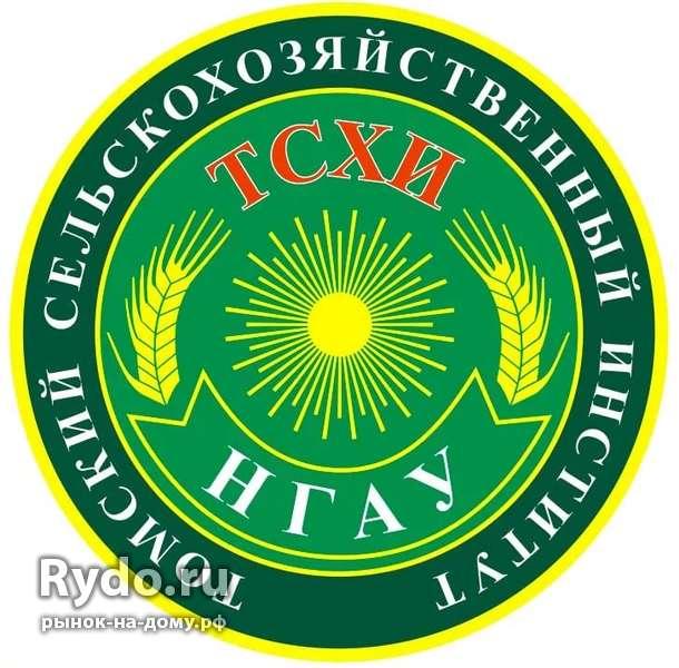Курсовые рефераты дипломные чертежи в Каргасок цена рублей Курсовые рефераты дипломные чертежи