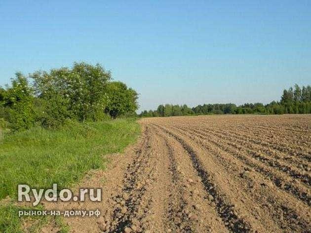 Можно ли продать земельный пай сельхозназначения пока длился