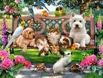 ПУШИСТИК - домашняя мини <strong>собак</strong> гостиница для животных