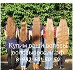 Куплю волосы в Воронеже! Дорого! волосыроссии.рф